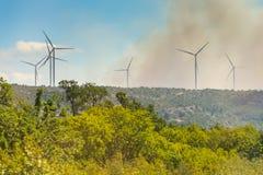 从森林火灾的烟云 库存照片