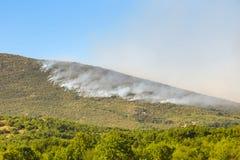从森林火灾的烟云 免版税库存图片