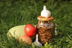 从森林的用卤汁泡的蘑菇 库存照片