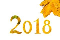 从槭树雕刻的2018个图在白色背景离开 免版税库存图片