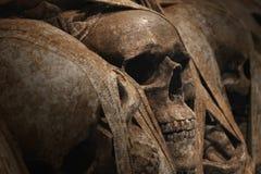从死亡谷的头骨 免版税库存照片