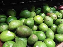 从每日收获的鲕梨在超级市场被卖 免版税库存照片