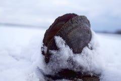 从池塘-冬时 免版税库存照片