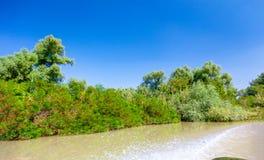 从汽艇的看法向美好的自然和河 库存图片