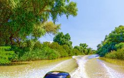 从汽艇的看法向美好的自然和河 免版税库存照片