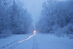 从汽车在晚上,冬天森林的尾灯的足迹 库存照片