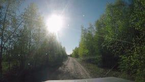从汽车的看法 夏天在路的旅行在晴天 股票视频