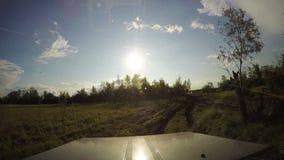 从汽车的看法 夏天在路的旅行在晴天 4K 股票录像