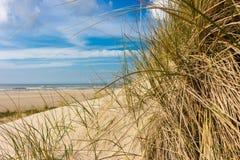 从沙丘的看法到海滩在一个晴天,通过沙丘草 免版税图库摄影