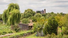 从沼泽的布尔日主教座堂视图 免版税库存图片