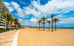从沿海岸区的看法海、棕榈树和海滩的在市库列拉角 巴伦西亚区  西班牙 免版税库存照片