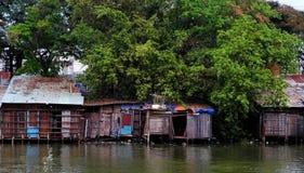 从波纹状的金属板的河沿老降低等级房子在大树下 图库摄影