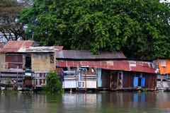 从波纹状的金属板的河沿老降低等级房子在大树下 免版税库存照片