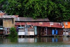 从波纹状的金属板的河沿老降低等级房子在大树下 免版税图库摄影