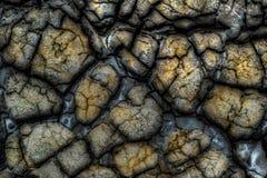从泥火山的干泥 免版税图库摄影