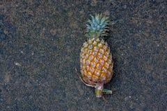 从泰国的一个甜菠萝 库存照片