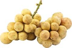 从泰国的长的锣果子 库存图片