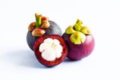 从泰国的mangoteen 免版税图库摄影