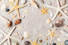 从海星的宏观在沙滩顶视图的框架和贝壳 免版税图库摄影