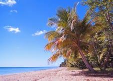 从海滩的午间波多里哥 免版税库存图片