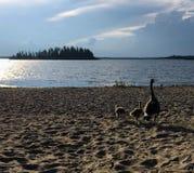 从海滩的美丽的景色有家庭的Astotin湖 免版税库存图片