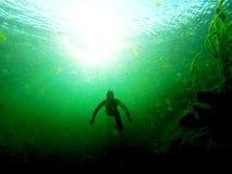 从深的人-在污水池的Freediving 免版税库存照片
