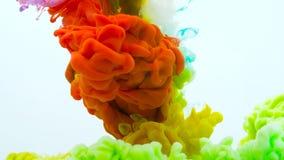 从混合的底部的五颜六色的彩虹油漆下落在水中 E 在白色隔绝的柔滑的墨水云彩 影视素材