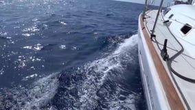 从游艇的甲板的一个看法弓和风帆的,特写镜头 与蓝色海和波浪的S ide视图 股票视频
