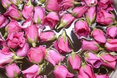 从湿玫瑰的背景 库存照片