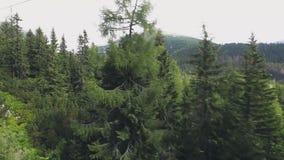 从滑雪吊车缆车的看法在Tatra山 影视素材