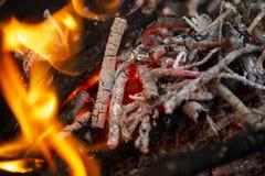 从火的灼烧的灰在格栅在森林里 库存图片