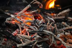 从火的灼烧的灰在格栅在森林里 免版税图库摄影