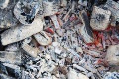 从火的闷燃的灰在森林里 免版税图库摄影