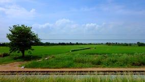 从火车的乡下风景 库存照片