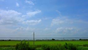 从火车的乡下风景 免版税库存照片