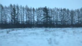 从火车窗口的冬天俄国风景,公共汽车,汽车 影视素材