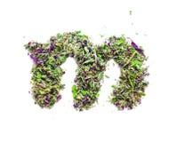 从烘干的信件M英语字母表清凉茶  库存照片