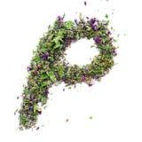 从烘干的信件p英语字母表清凉茶  图库摄影