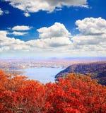从熊山的顶端叶子风景 免版税图库摄影