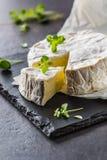 从牛至草本的乳酪camambert在板岩板 免版税库存照片