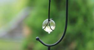 从玻璃碗的下落滴水在围场 股票视频