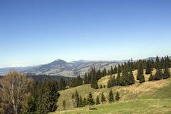 从瓦特拉多尔内看见的喀尔巴阡山脉 免版税库存图片