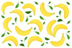 从用绿色叶子装饰的整个香蕉的无缝的样式隔绝在白色背景 顶视图 平的位置 库存照片