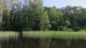 从登上帆船的录影 伏尔加河,俄罗斯 沿岸的有绿色植被的运动或海岛 影视素材
