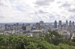 从皇家山Kondiaronk眺望楼的蒙特利尔全景  免版税库存照片