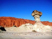 从石头的蘑菇 图库摄影