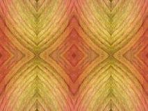 从秋天叶子的片段的幻想相称装饰品-菱形和风格化叶子 库存图片