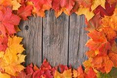 从秋天槭树叶子的装饰背景框架 免版税图库摄影