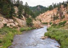 从科罗拉多落矶山的风景场面 南普拉特河 免版税图库摄影