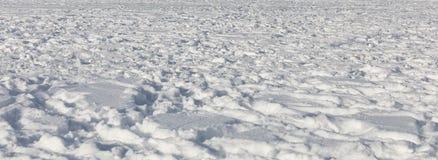 从积雪的领域的背景与踪影在与长的阴影和低太阳的一个晴天 免版税库存图片
